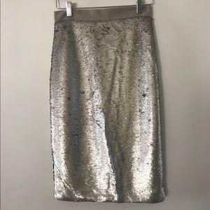 Banana Republic silver sequin skirt